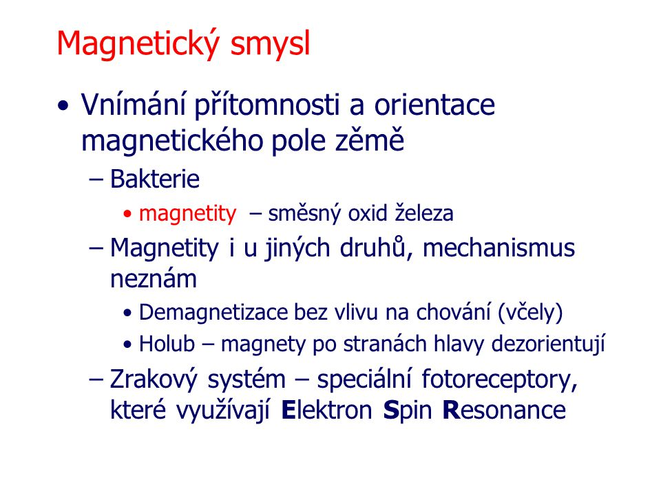 Magnetický smysl Vnímání přítomnosti a orientace magnetického pole zěmě –Bakterie magnetity – směsný oxid železa –Magnetity i u jiných druhů, mechanismus neznám Demagnetizace bez vlivu na chování (včely) Holub – magnety po stranách hlavy dezorientují –Zrakový systém – speciální fotoreceptory, které využívají Elektron Spin Resonance
