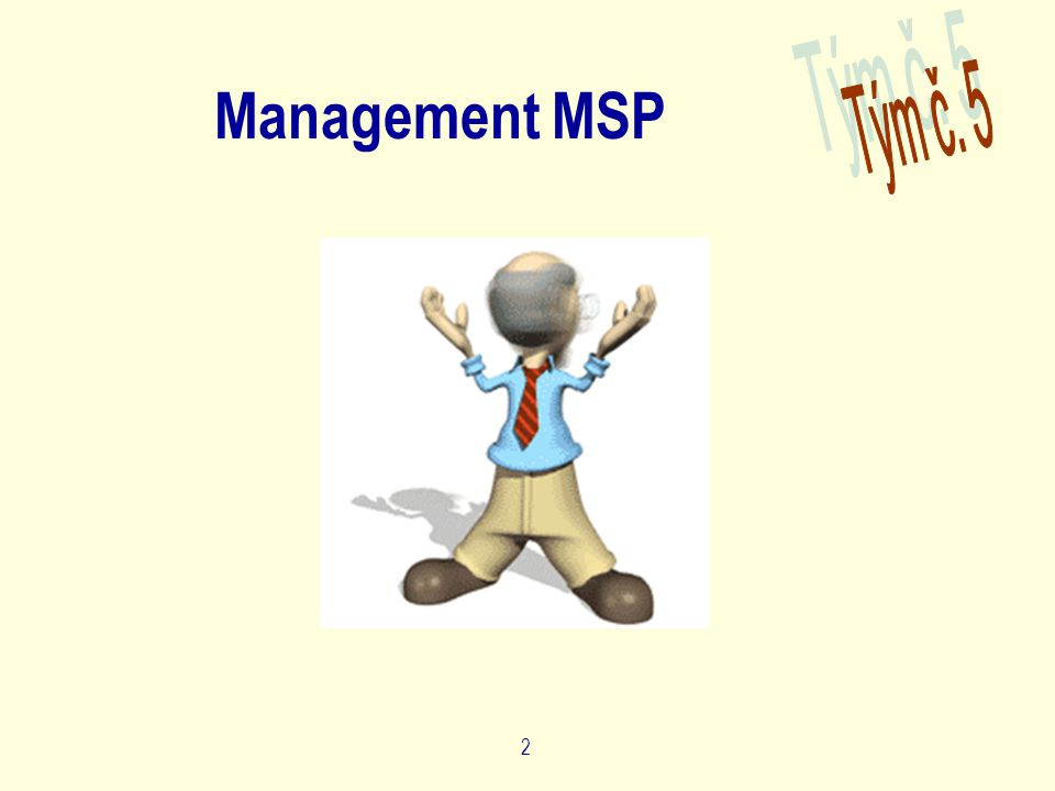 2 Management MSP