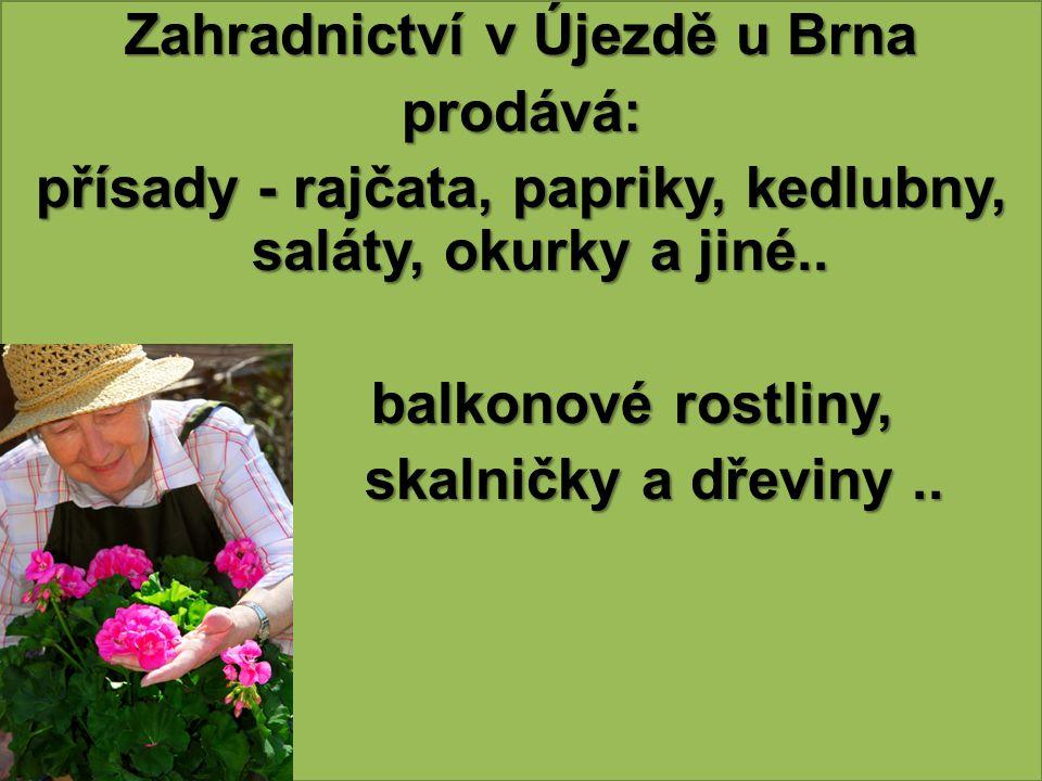 Zahradnictví v Újezdě u Brna prodává: přísady - rajčata, papriky, kedlubny, saláty, okurky a jiné.. balkonové rostliny, balkonové rostliny, skalničky