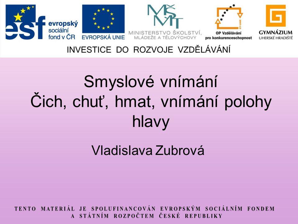 Smyslové vnímání Čich, chuť, hmat, vnímání polohy hlavy Vladislava Zubrová