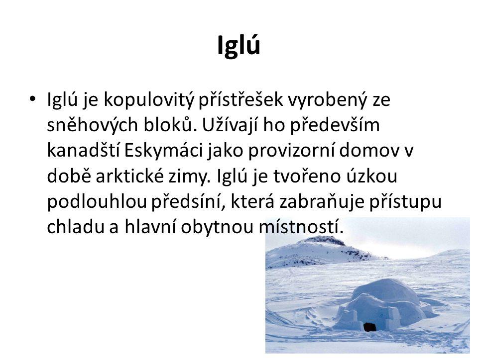 Iglú Iglú je kopulovitý přístřešek vyrobený ze sněhových bloků. Užívají ho především kanadští Eskymáci jako provizorní domov v době arktické zimy. Igl