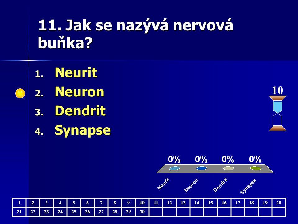 11. Jak se nazývá nervová buňka. 10 123456789 11121314151617181920 21222324252627282930 1.