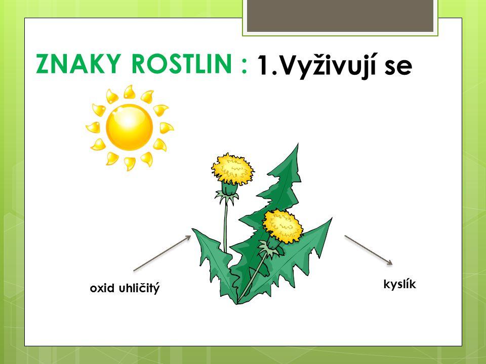 ZNAKY ROSTLIN : oxid uhličitý kyslík 1.Vyživují se