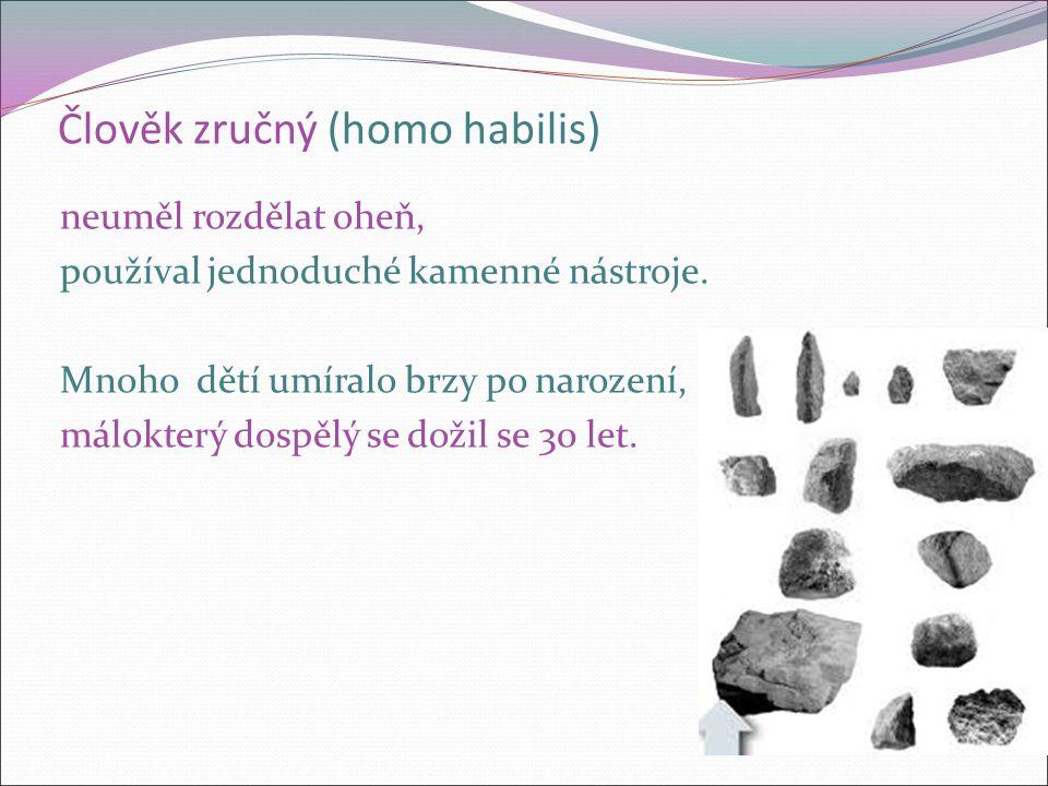 Člověk zručný (homo habilis) neuměl rozdělat oheň, používal jednoduché kamenné nástroje. Mnoho dětí umíralo brzy po narození, málokterý dospělý se dož