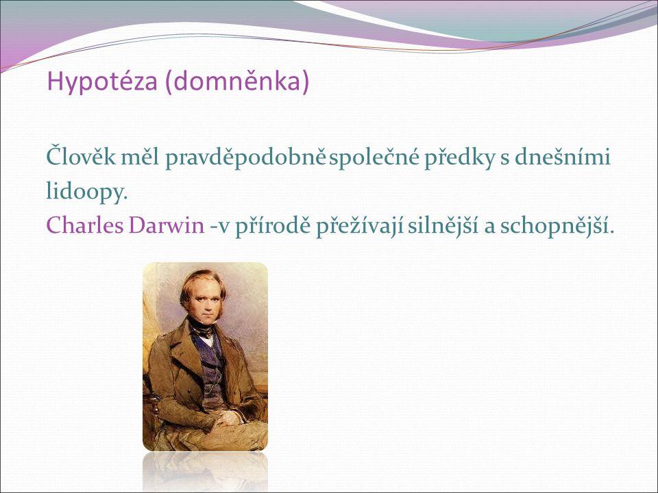 Hypotéza (domněnka) Člověk měl pravděpodobně společné předky s dnešními lidoopy. Charles Darwin -v přírodě přežívají silnější a schopnější.