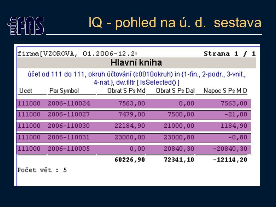 IQ - pohled na účetní data