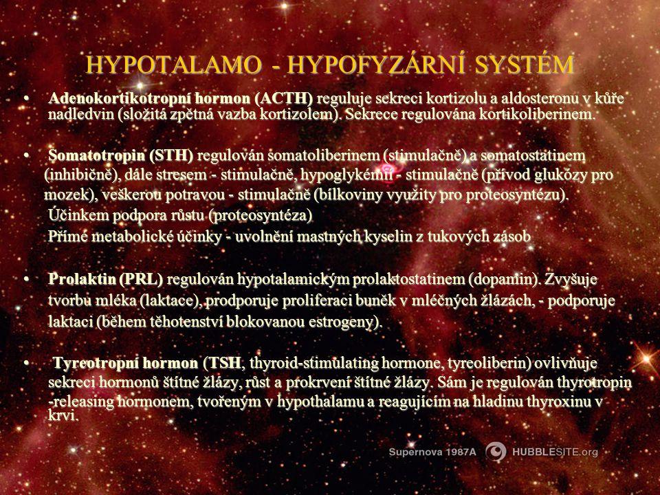 HYPOTALAMO - HYPOFYZÁRNÍ SYSTÉM Adenokortikotropní hormon (ACTH) reguluje sekreci kortizolu a aldosteronu v kůře nadledvin (složitá zpětná vazba korti