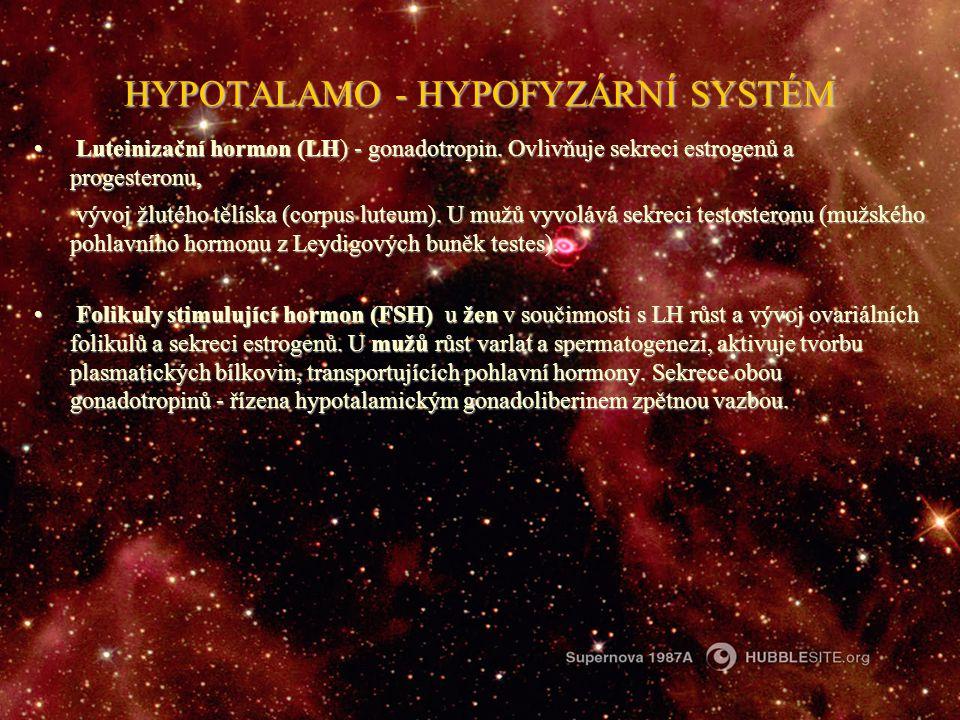 HYPOTALAMO - HYPOFYZÁRNÍ SYSTÉM Luteinizační hormon (LH) - gonadotropin. Ovlivňuje sekreci estrogenů a progesteronu, Luteinizační hormon (LH) - gonado