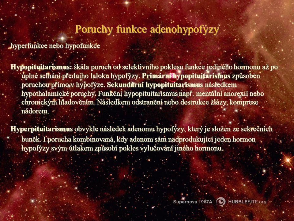 Poruchy funkce adenohypofýzy hyperfunkce nebo hypofunkce Hypopituitarismus: škála poruch od selektivního poklesu funkce jediného hormonu až po úplné s
