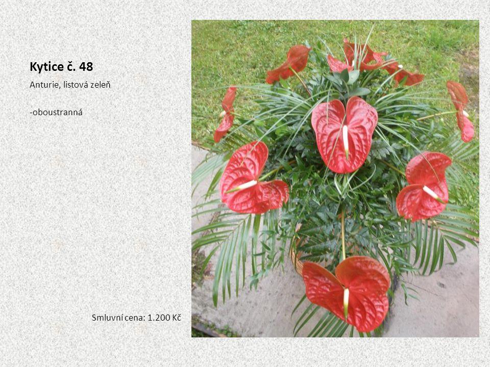 Kytice č. 48 Anturie, listová zeleň -oboustranná Smluvní cena: 1.200 Kč