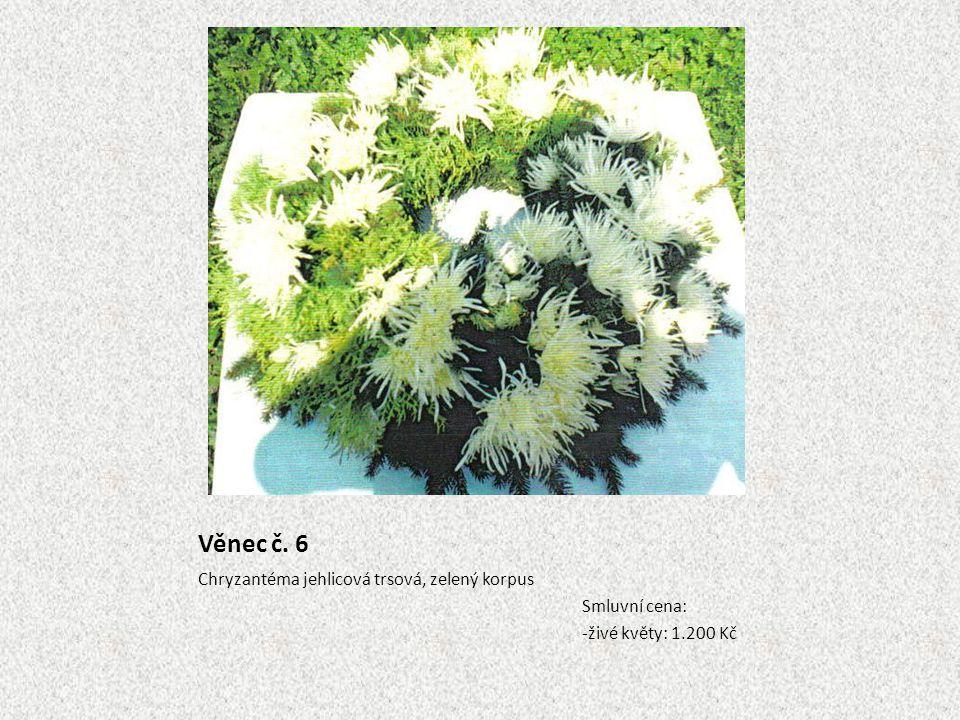 Věnec č. 6 Chryzantéma jehlicová trsová, zelený korpus Smluvní cena: -živé květy: 1.200 Kč
