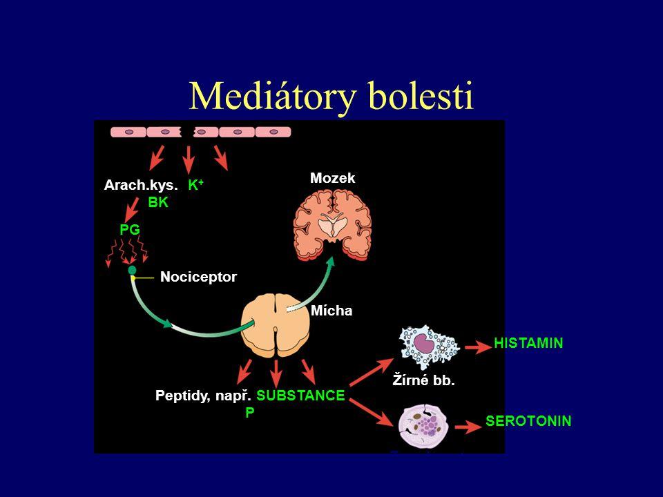 Mediátory bolesti BK = bradykinin; PG = prostaglandin Poškození buněk Mozek Mícha Arach.kys.K + BK PG Nociceptor Peptidy, např. SUBSTANCE P HISTAMIN S