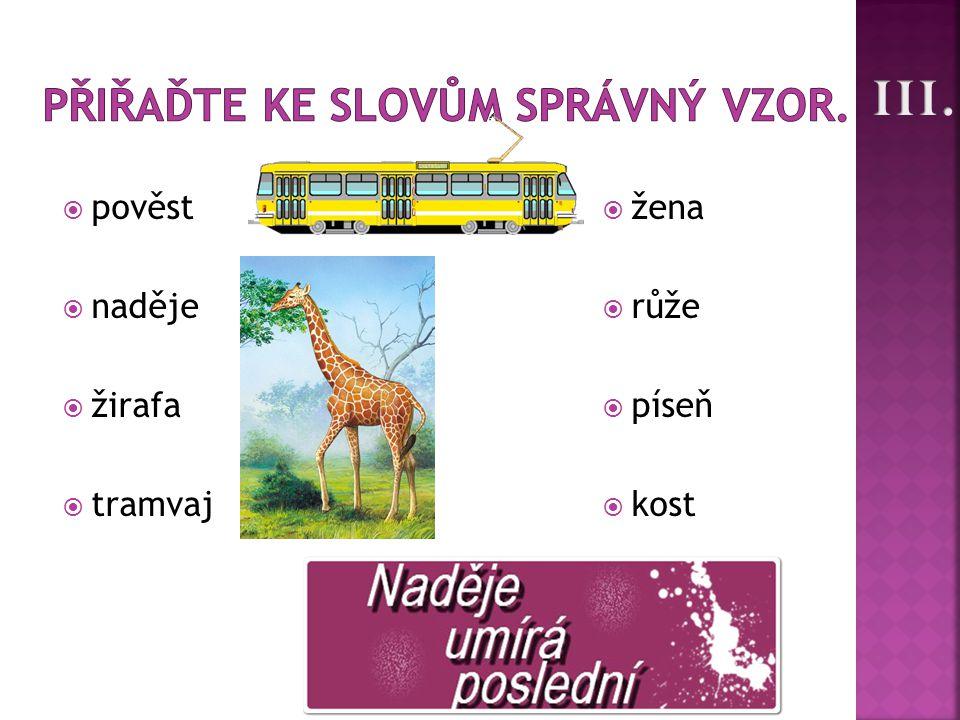  pověst  naděje  žirafa  tramvaj  žena  růže  píseň  kost