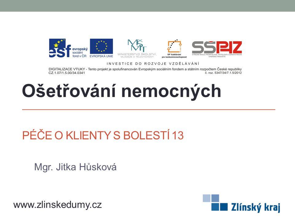 PÉČE O KLIENTY S BOLESTÍ 13 Mgr. Jitka Hůsková Ošetřování nemocných www.zlinskedumy.cz