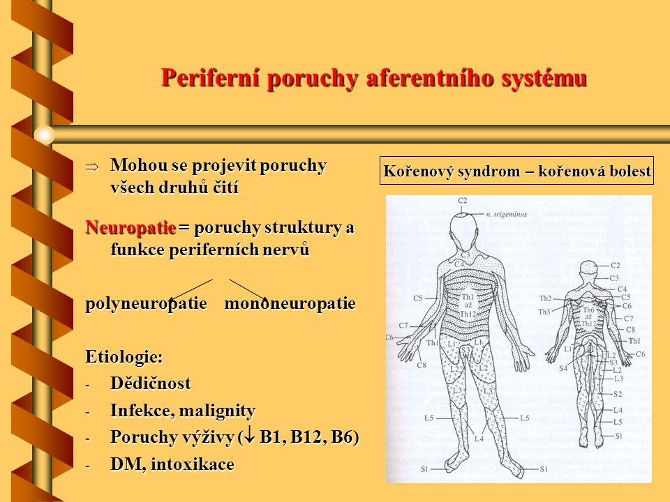 Periferní poruchy aferentního systému  Mohou se projevit poruchy všech druhů čití Neuropatie = poruchy struktury a funkce periferních nervů polyneuro