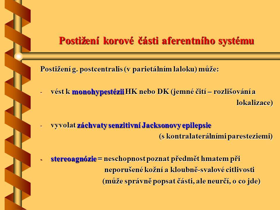 Postižení korové části aferentního systému Postižení g. postcentralis (v parietálním laloku) může: - vést k monohypestézii HK nebo DK (jemné čití – ro