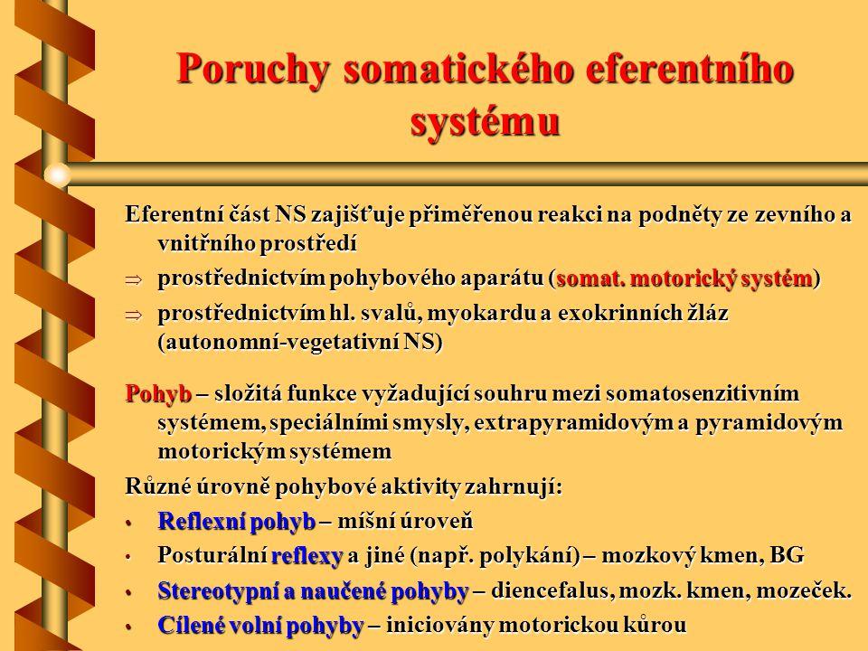 Poruchy somatického eferentního systému Eferentní část NS zajišťuje přiměřenou reakci na podněty ze zevního a vnitřního prostředí  prostřednictvím po