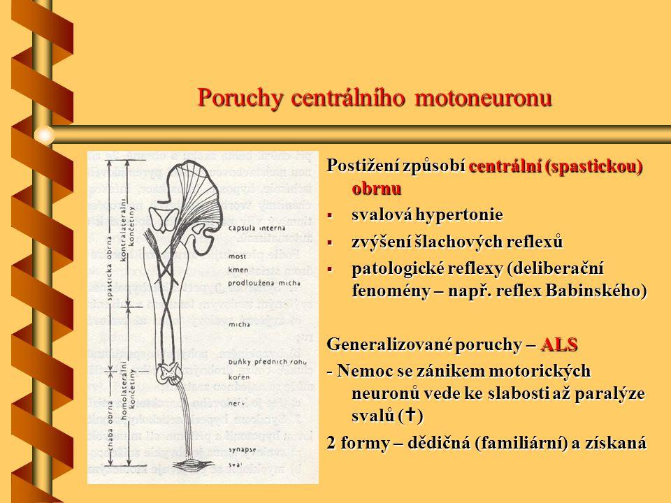 Poruchy centrálního motoneuronu centrální (spastickou) obrnu Postižení způsobí centrální (spastickou) obrnu  svalová hypertonie  zvýšení šlachových