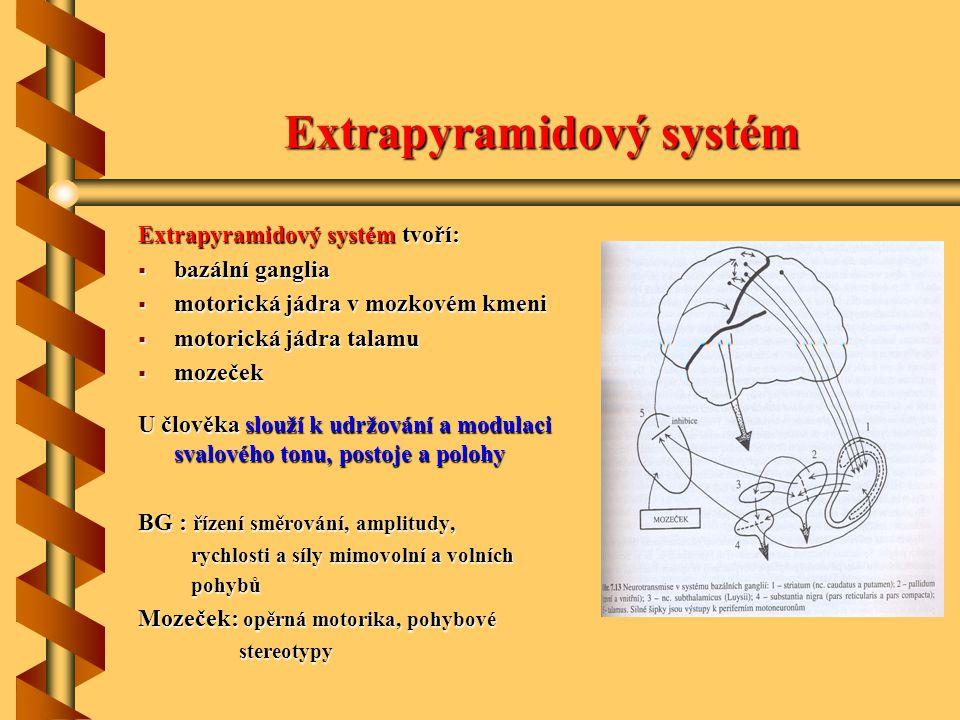 Extrapyramidový systém Extrapyramidový systém Extrapyramidový systém tvoří:  bazální ganglia  motorická jádra v mozkovém kmeni  motorická jádra tal