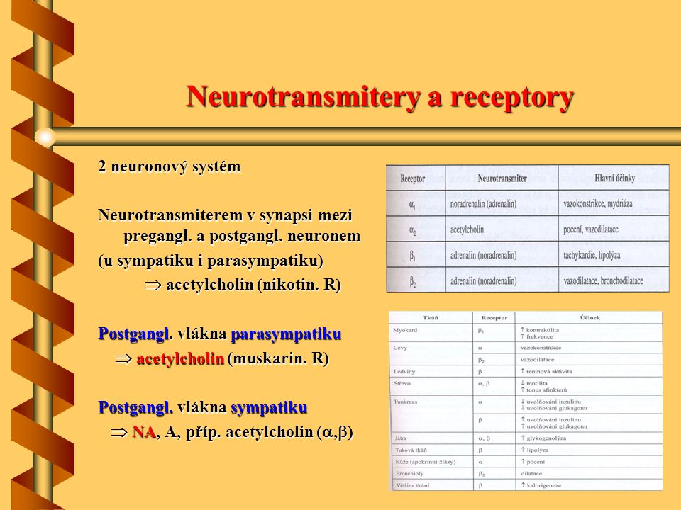 Neurotransmitery a receptory 2 neuronový systém Neurotransmiterem v synapsi mezi pregangl. a postgangl. neuronem (u sympatiku i parasympatiku)  acety