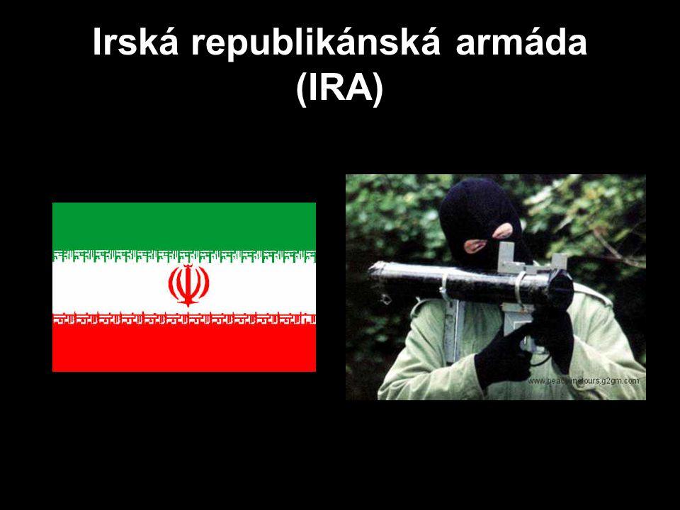 Irská republikánská armáda (IRA)