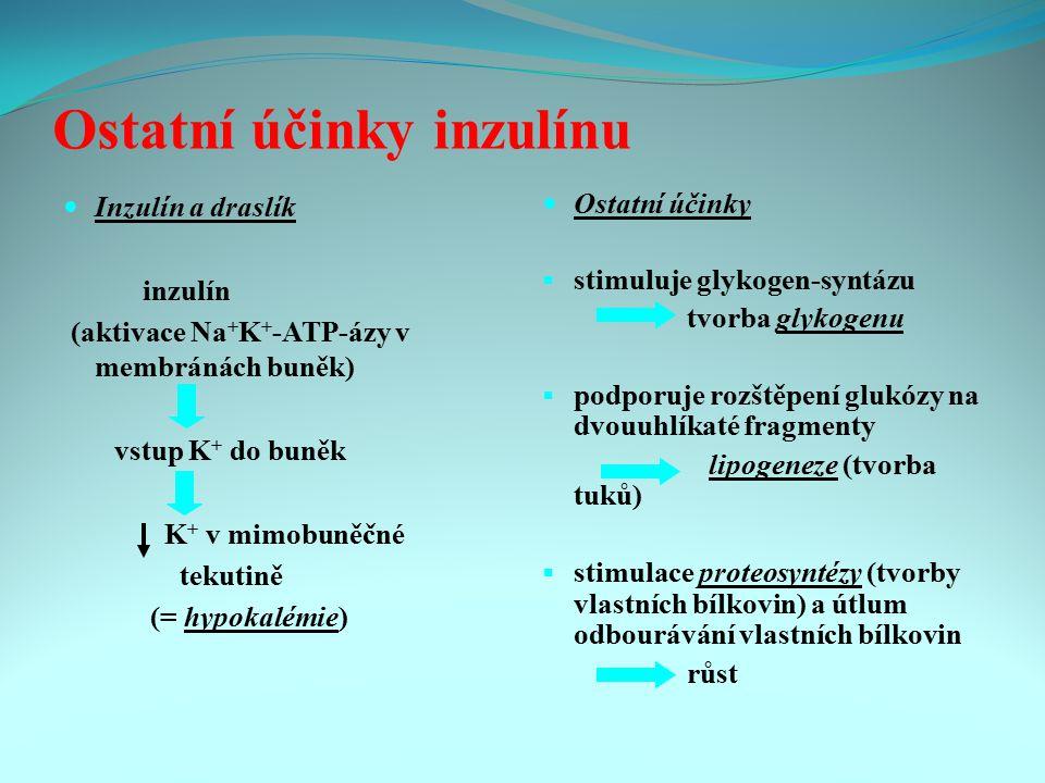 Ostatní účinky inzulínu Inzulín a draslík inzulín (aktivace Na + K + -ATP-ázy v membránách buněk) vstup K + do buněk K + v mimobuněčné tekutině (= hyp