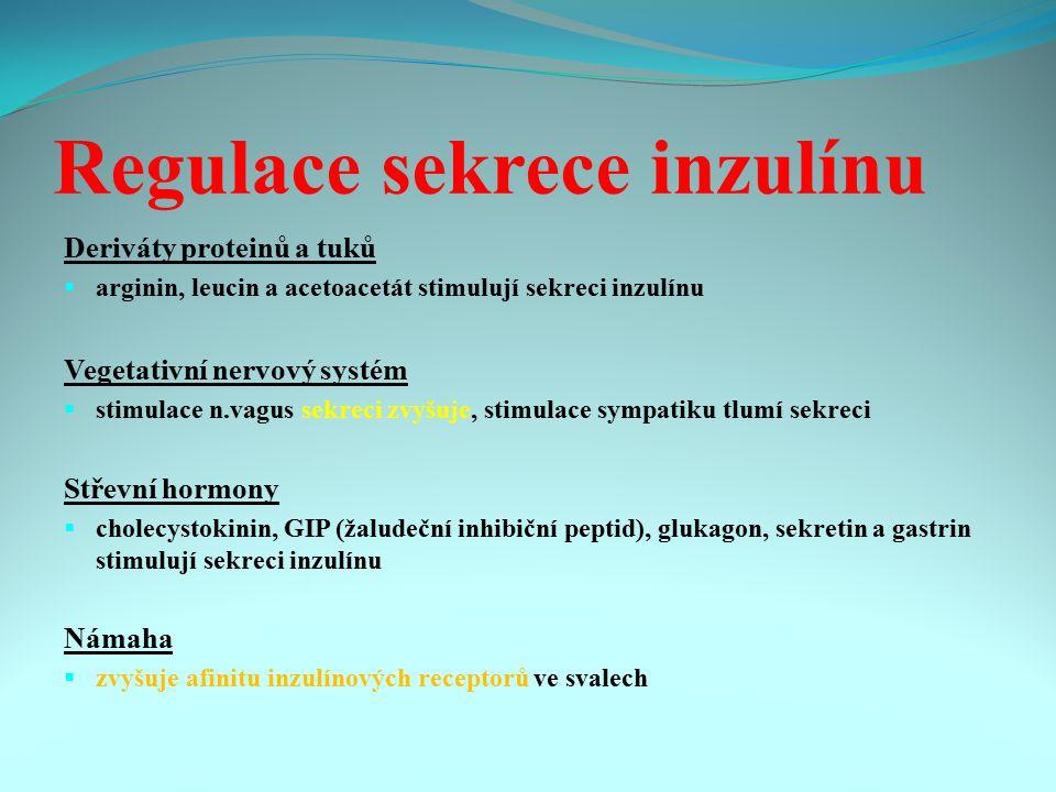 Regulace sekrece inzulínu Deriváty proteinů a tuků  arginin, leucin a acetoacetát stimulují sekreci inzulínu Vegetativní nervový systém  stimulace n