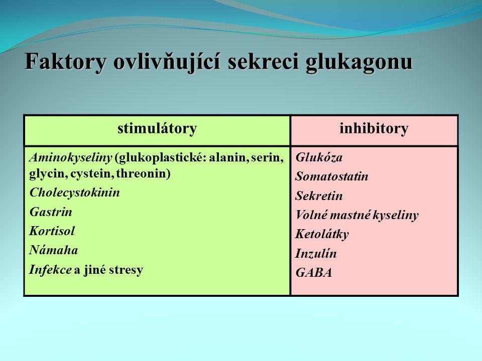 Faktory ovlivňující sekreci glukagonu stimulátoryinhibitory Aminokyseliny (glukoplastické: alanin, serin, glycin, cystein, threonin) Cholecystokinin G