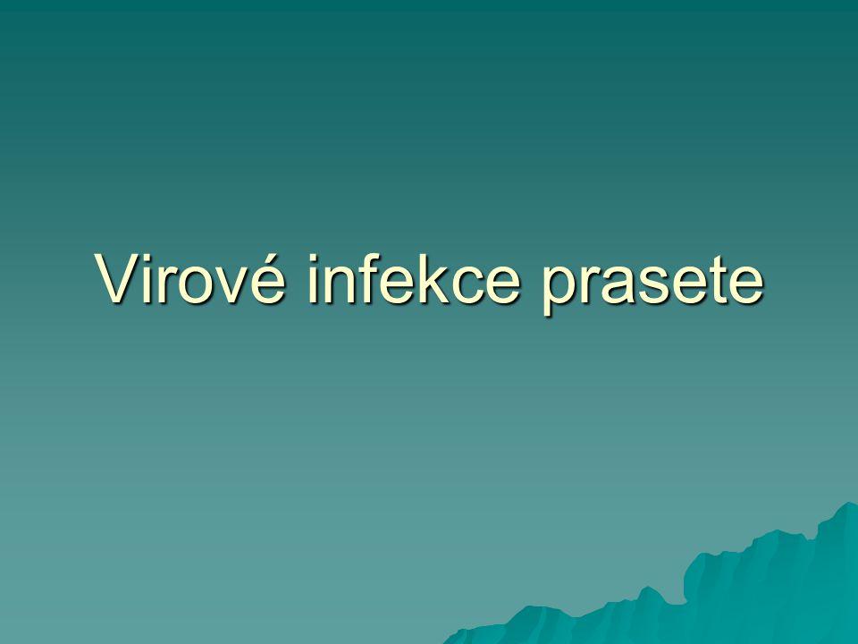 Teschovirus prasat Enterovirus prasat  Picornavirus  Polioencephalomyelitis, časté inaparentní infekce  Vysoce virulentní kmeny (sérotyp 1) vyvolávají Těšínskou chorobu s vysokou mortalitou  Pomnožení v mononukleárních buňkách Lamina propria, hematogenní rozsev do CNS  Horečka, ataxie, křeče, paralýza