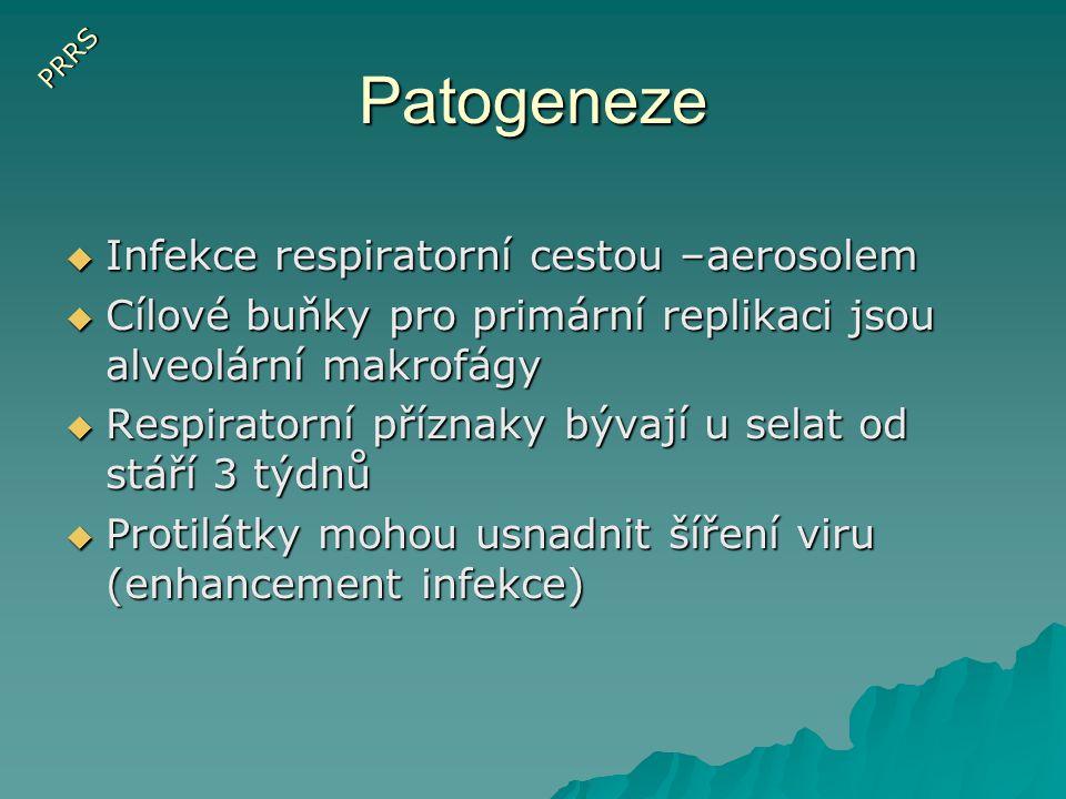 Virus Aujeszkyho choroby  Prase je primární hostitel a jediný přirozený rezervoár viru  Přenos respiratorní cestou  Inkubační doba 2-3 dny  Primární replikace viru v orofaryngu  Latentní infekce v g.