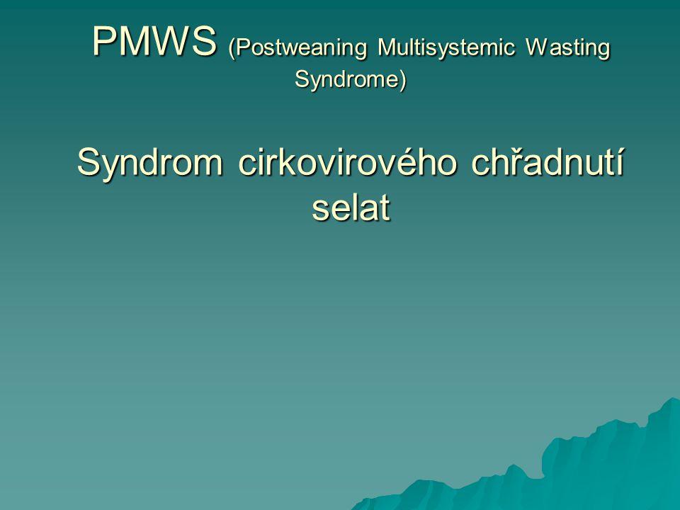 PCV-2 PPV PRRS Stres .Imunostimulace Imunosuprese PMWS Patogeneze stále nejasná !.