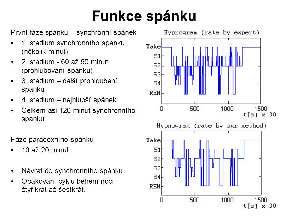 Funkce spánku První fáze spánku – synchronní spánek 1. stadium synchronního spánku (několik minut) 2. stadium - 60 až 90 minut (prohlubování spánku) 3