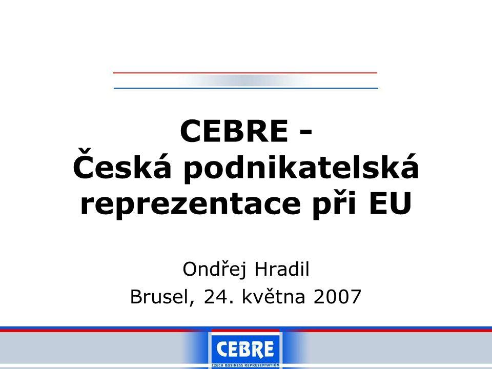 Ondřej Hradil Brusel, 24. května 2007 CEBRE - Česká podnikatelská reprezentace při EU