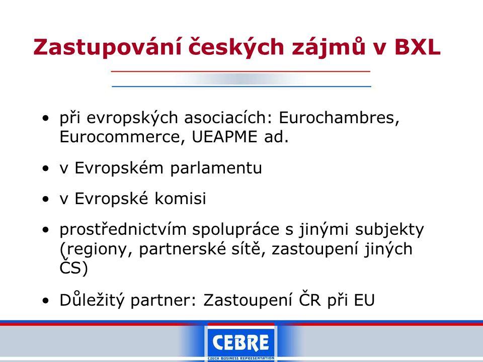 Zastupování českých zájmů v BXL při evropských asociacích: Eurochambres, Eurocommerce, UEAPME ad.