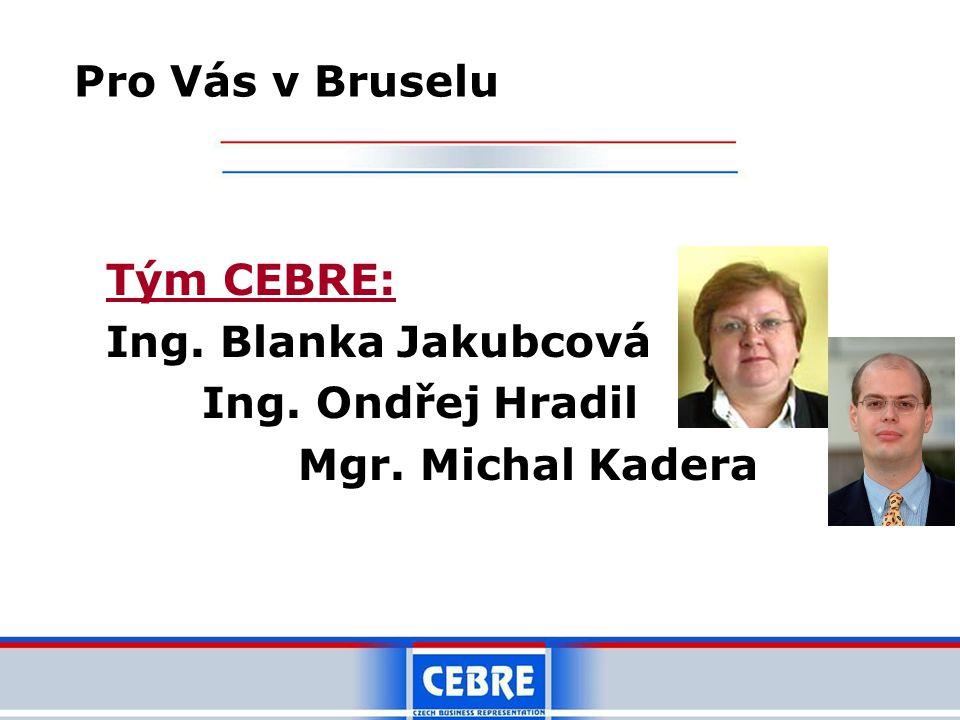 Tým CEBRE: Ing. Blanka Jakubcová Ing. Ondřej Hradil Mgr. Michal Kadera Pro Vás v Bruselu