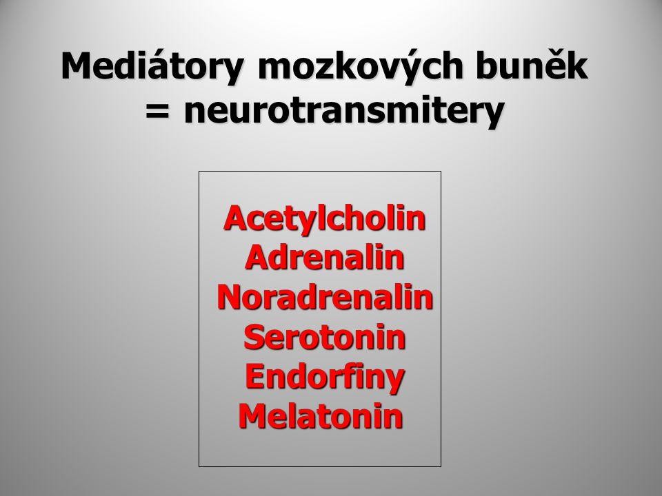 Mediátory mozkových buněk = neurotransmitery Acetylcholin Acetylcholin Adrenalin Adrenalin Noradrenalin Noradrenalin Serotonin Serotonin Endorfiny Endorfiny Melatonin Melatonin