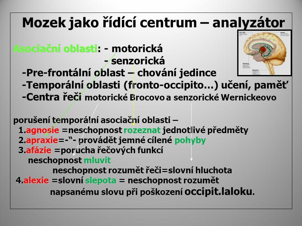 Mozek jako řídící centrum – analyzátor Asociačníoblasti Asociační oblasti: - motorická - senzorická -Pre-frontální oblast – chování jedince -Temporální oblasti (fronto-occipito…) učení, paměť -Centra řeči motorické Brocovo a senzorické Wernickeovo porušení temporální asociační oblasti – 1.agnosierozeznat 1.agnosie =neschopnost rozeznat jednotlivé předměty 2.apraxiepohyby 2.apraxie=- - provádět jemné cílené pohyby 3.afázie 3.afázie =porucha řečových funkcí mluvit neschopnost mluvit neschopnost rozumět řeči=slovní hluchota 4.alexieslepota 4.alexie =slovní slepota = neschopnost rozumět napsanému slovu při poškození occipit.laloku.