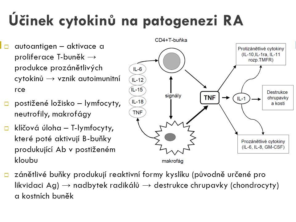 Účinek cytokinů na patogenezi RA  autoantigen – aktivace a proliferace T-buněk → produkce prozánětlivých cytokinů → vznik autoimunitní rce  postižen