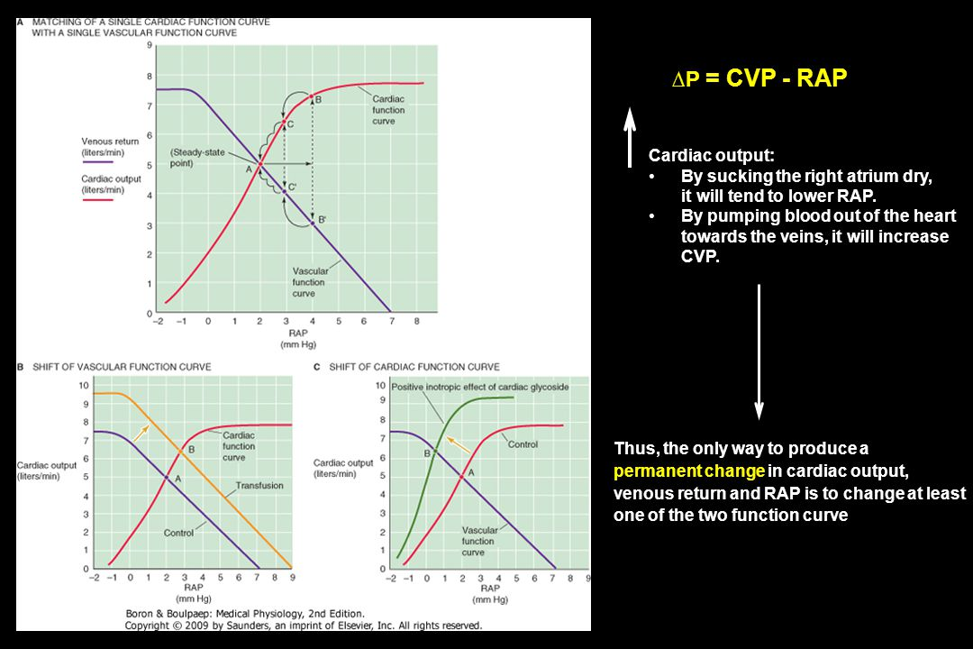 ∆P = CVP - RAP Cardiac output: By sucking the right atrium dry, it will tend to lower RAP. By pumping blood out of the heart towards the veins, it wil