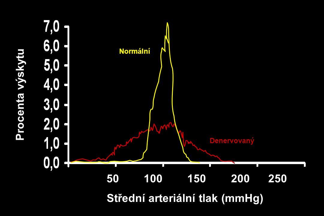 50 100 150 200 250 Střední arteriální tlak (mmHg) Denervovaný Normální Procenta výskytu