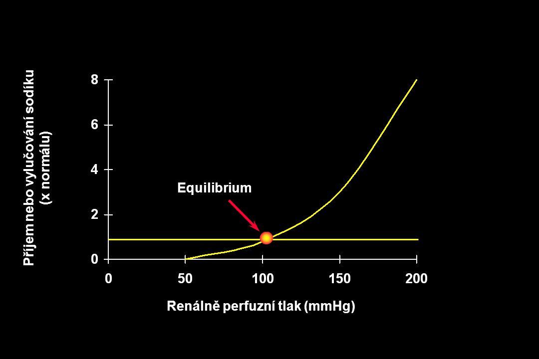 Renálně perfuzní tlak (mmHg) Příjem nebo vylučování sodíku (x normálu) Equilibrium