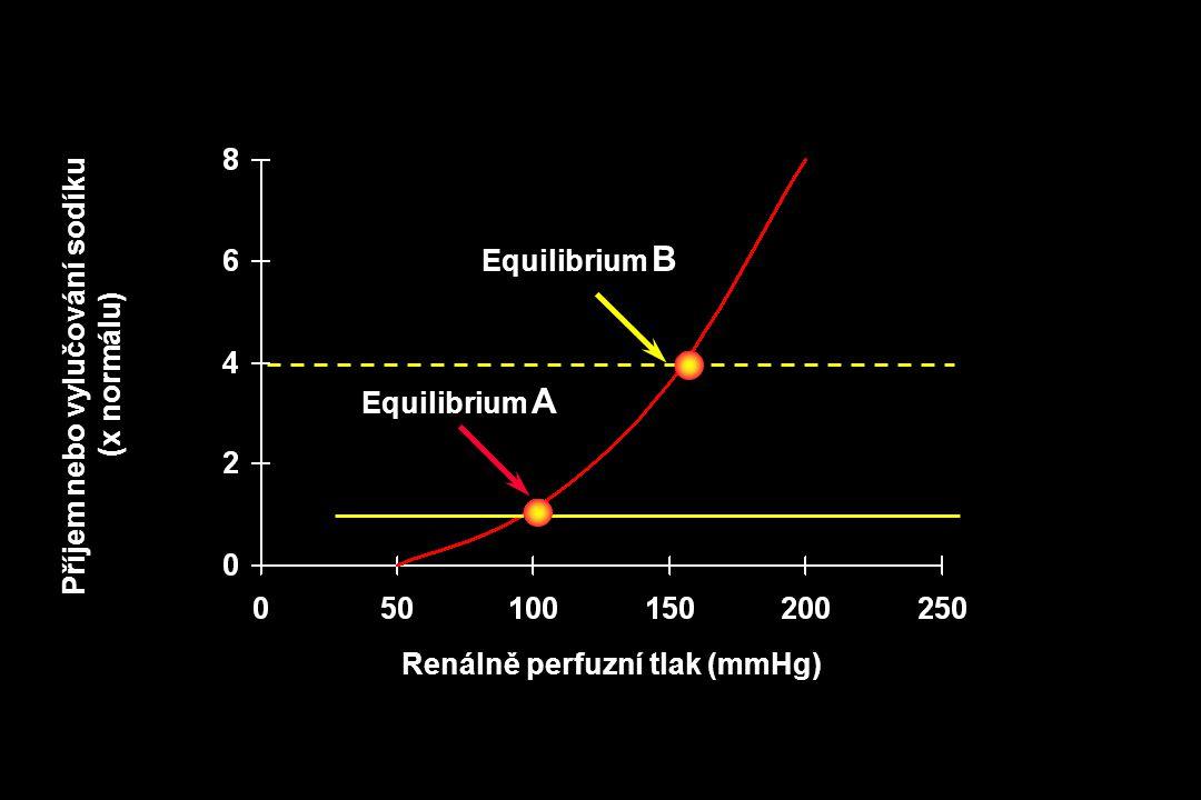 Renálně perfuzní tlak (mmHg) Příjem nebo vylučování sodíku (x normálu) Equilibrium A Equilibrium B