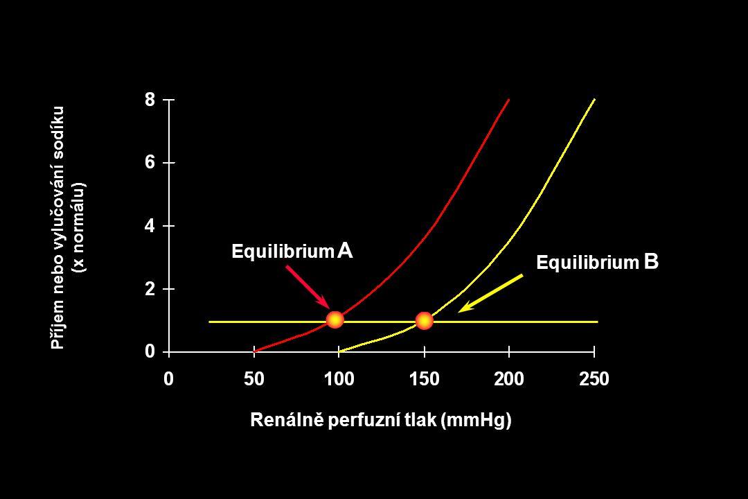Renálně perfuzní tlak (mmHg) Equilibrium B Příjem nebo vylučování sodíku (x normálu) Equilibrium A