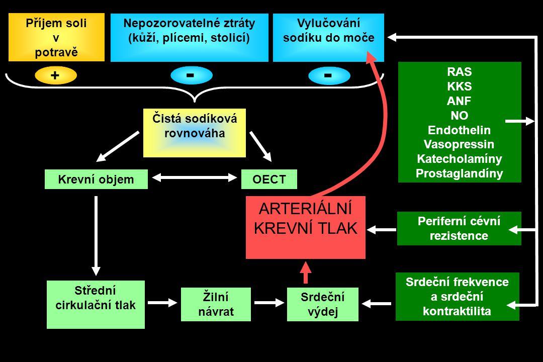 Příjem soli v potravě Nepozorovatelné ztráty (kůží, plícemi, stolicí) Vylučování sodíku do moče Čistá sodíková rovnováha Krevní objemOECT Střední cirkulační tlak Žilní návrat Srdeční výdej Srdeční frekvence a srdeční kontraktilita ARTERIÁLNÍ KREVNÍ TLAK Periferní cévní rezistence RAS KKS ANF NO Endothelin Vasopressin Katecholamíny Prostaglandíny + - -