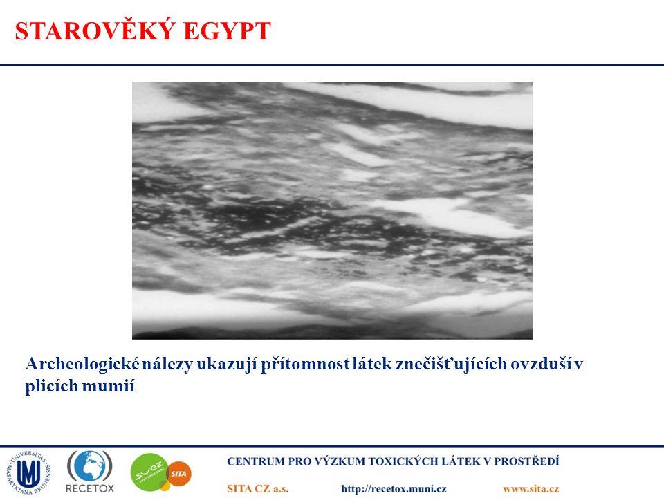 STAROVĚKÝ EGYPT Archeologické nálezy ukazují přítomnost látek znečišťujících ovzduší v plicích mumií