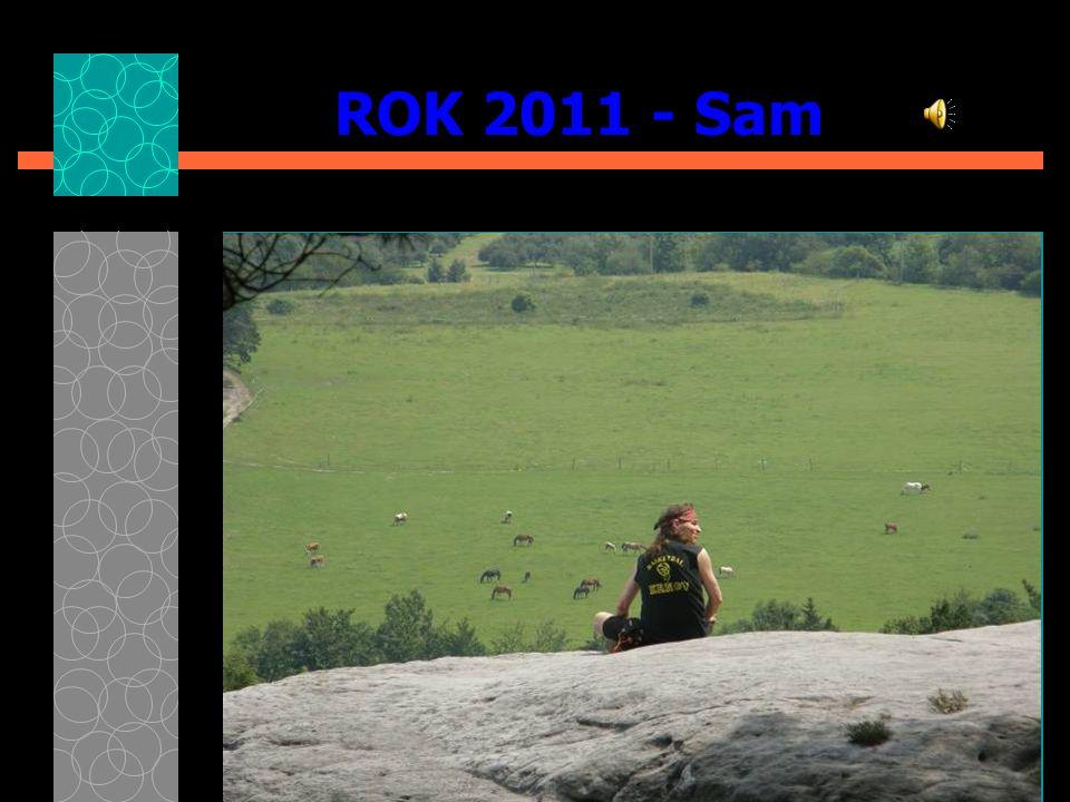 ROK 2011 - Sam