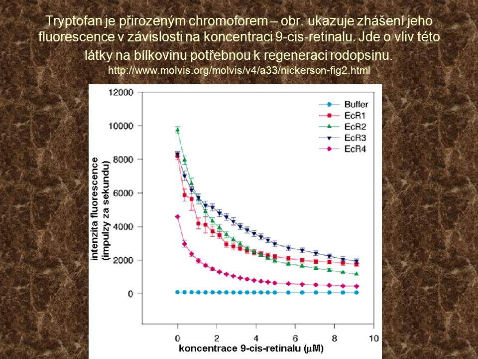 Tryptofan je přirozeným chromoforem – obr. ukazuje zhášení jeho fluorescence v závislosti na koncentraci 9-cis-retinalu. Jde o vliv této látky na bílk
