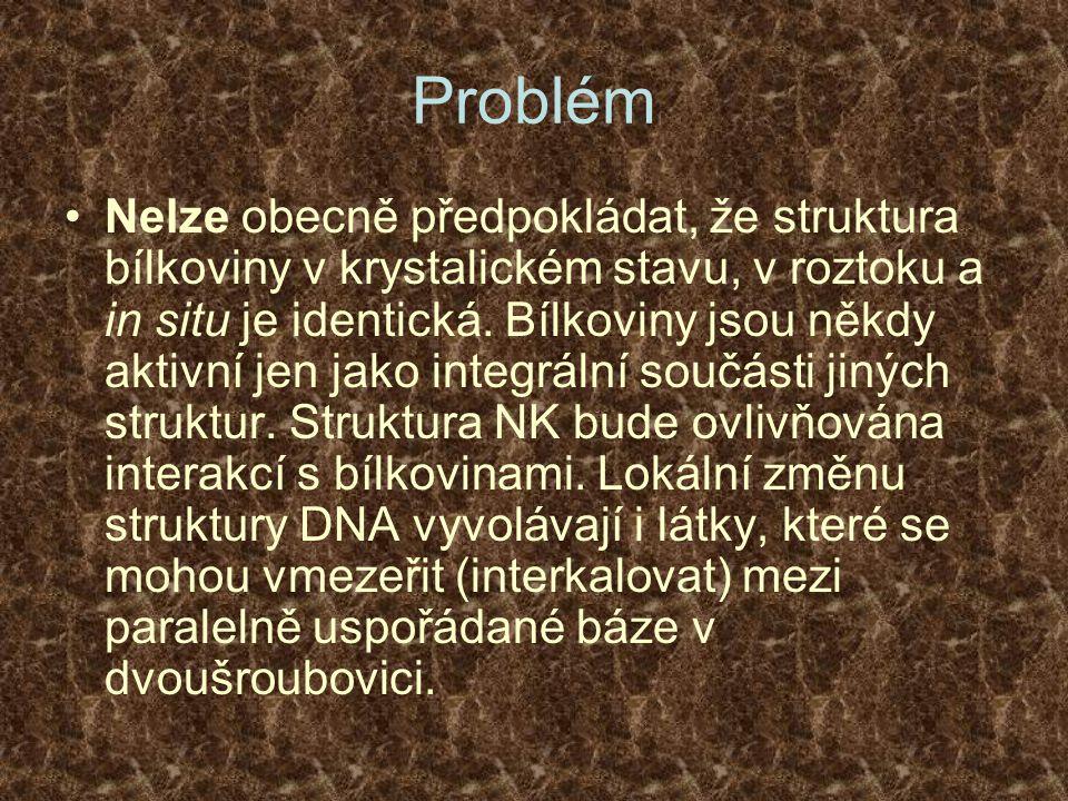 Problém Nelze obecně předpokládat, že struktura bílkoviny v krystalickém stavu, v roztoku a in situ je identická. Bílkoviny jsou někdy aktivní jen jak