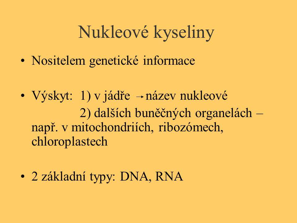 Nukleové kyseliny Nositelem genetické informace Výskyt: 1) v jádře název nukleové 2) dalších buněčných organelách – např. v mitochondriích, ribozómech