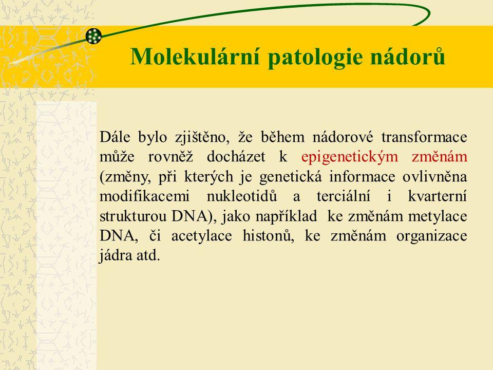 Molekulární patologie nádorů Dále bylo zjištěno, že během nádorové transformace může rovněž docházet k epigenetickým změnám (změny, při kterých je gen